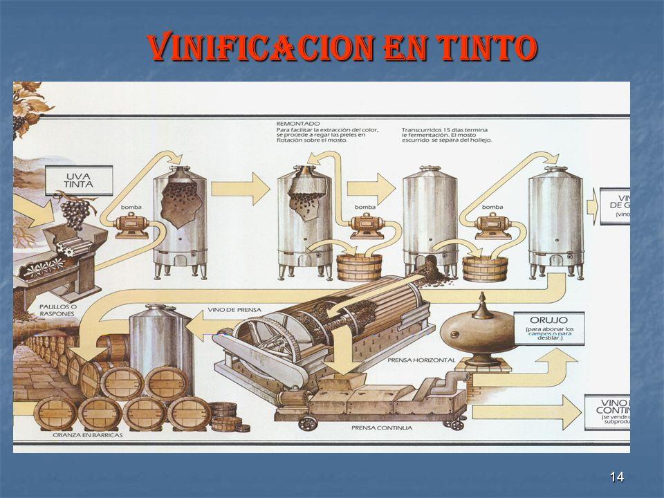 VINIFICACION EN TINTO