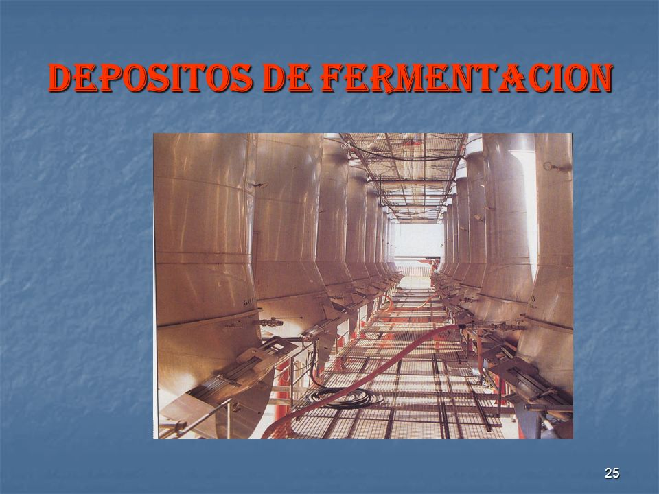 DEPOSITOS DE FERMENTACION