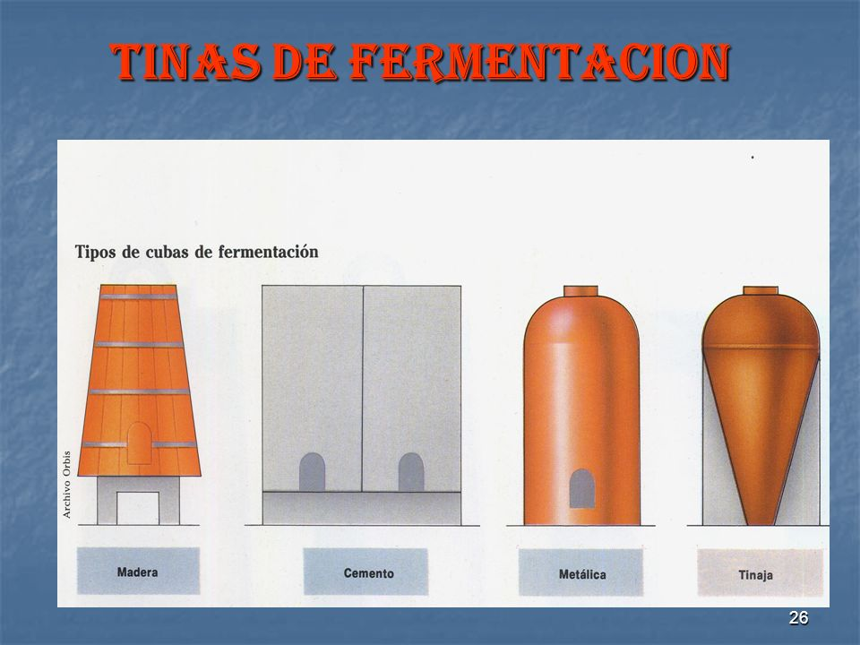 TINAS DE FERMENTACION