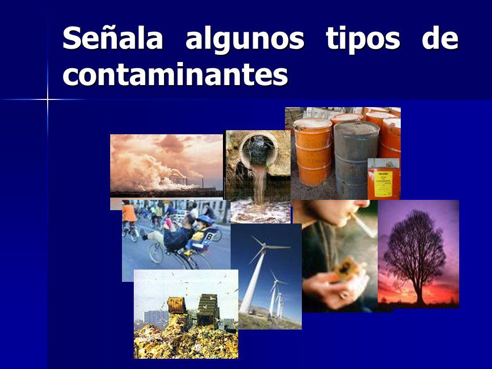 Señala algunos tipos de contaminantes