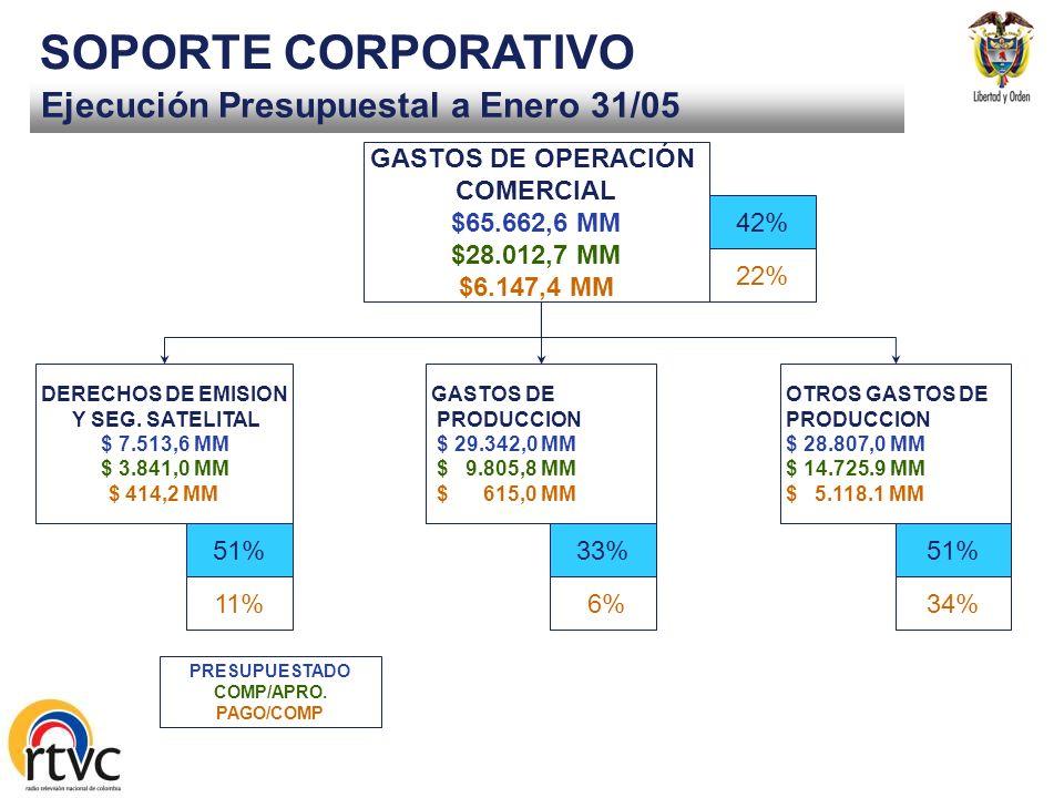 SOPORTE CORPORATIVO Ejecución Presupuestal a Enero 31/05