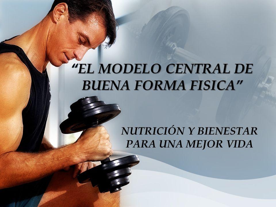 EL MODELO CENTRAL DE BUENA FORMA FISICA