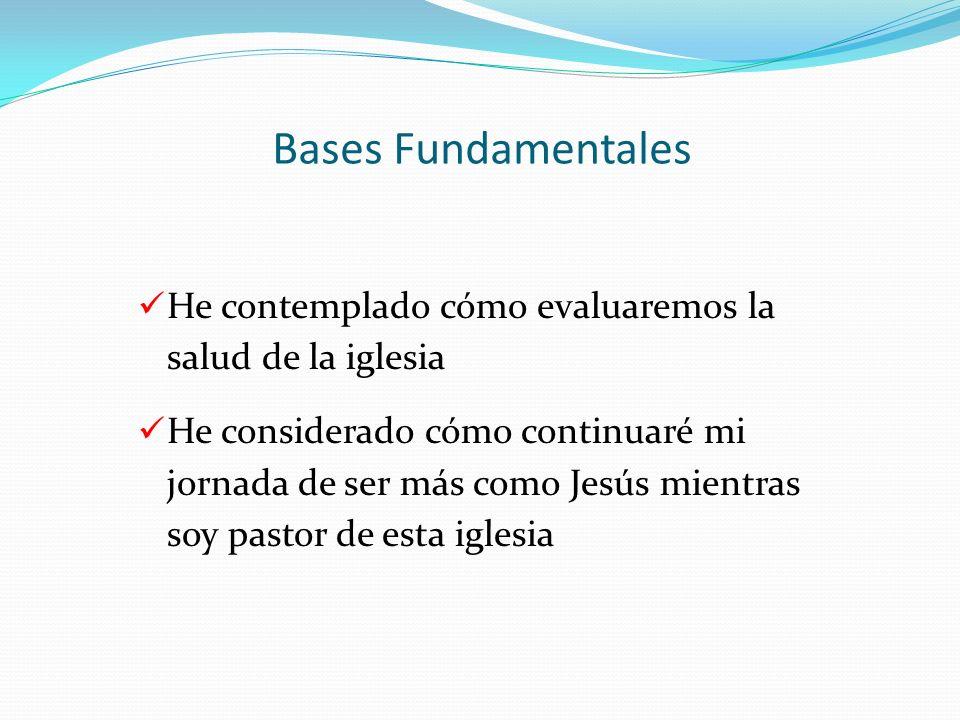 Bases Fundamentales He contemplado cómo evaluaremos la salud de la iglesia.