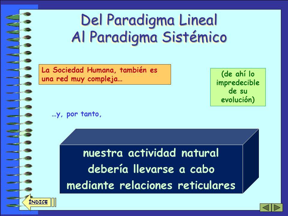 Del Paradigma Lineal Al Paradigma Sistémico