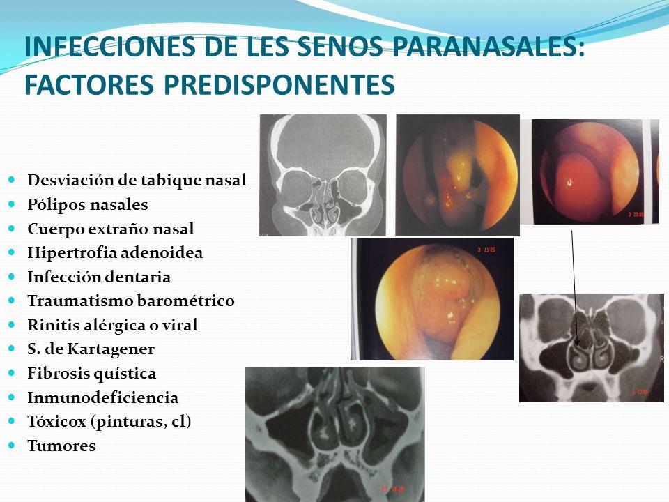 INFECCIONES DE LES SENOS PARANASALES: FACTORES PREDISPONENTES
