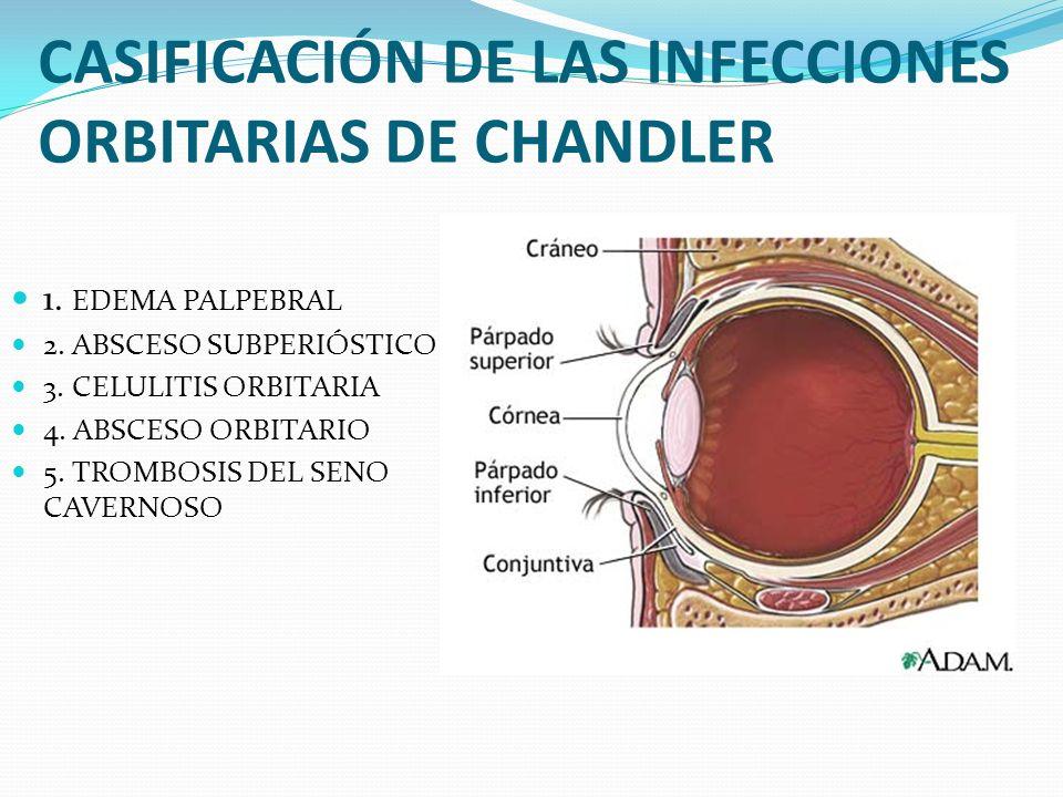 CASIFICACIÓN DE LAS INFECCIONES ORBITARIAS DE CHANDLER