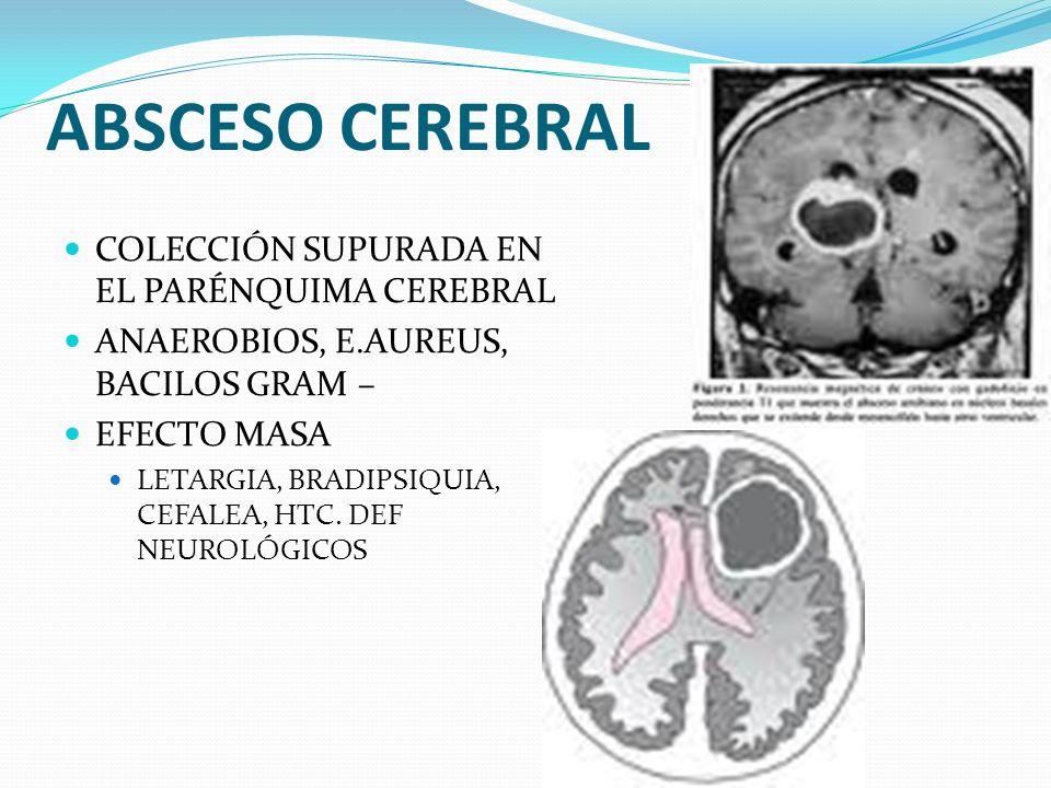 ABSCESO CEREBRAL COLECCIÓN SUPURADA EN EL PARÉNQUIMA CEREBRAL