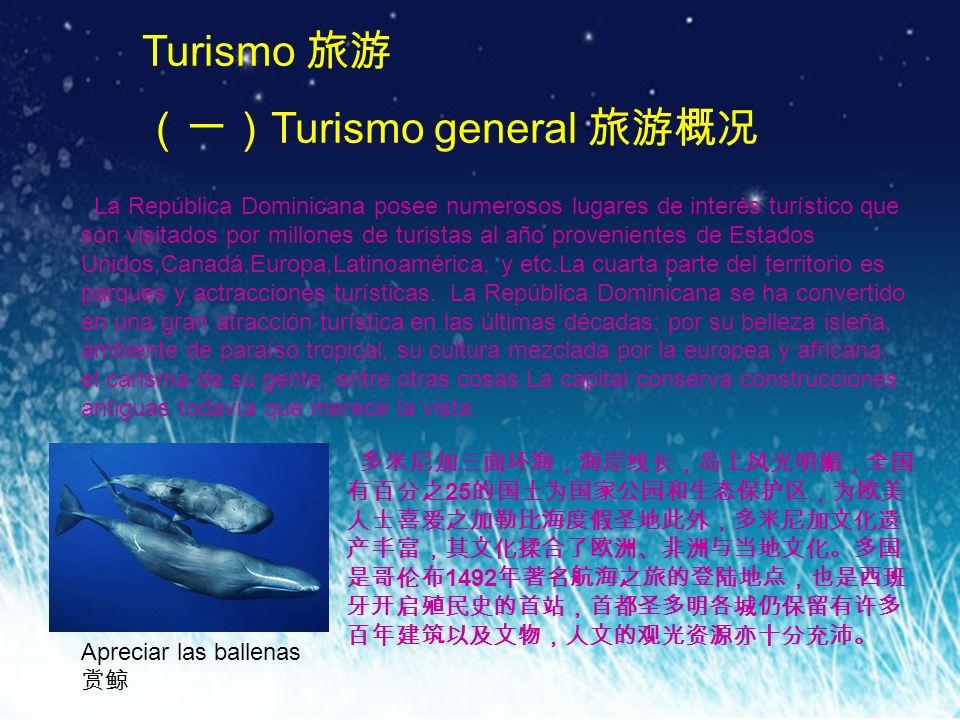 (一)Turismo general 旅游概况