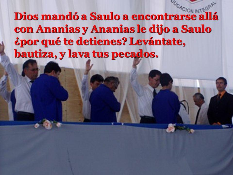 Dios mandó a Saulo a encontrarse allá con Ananias y Ananias le dijo a Saulo ¿por qué te detienes.