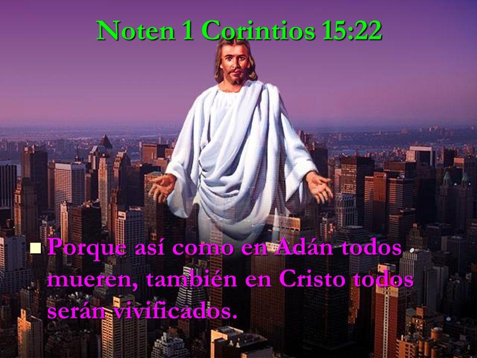 Noten 1 Corintios 15:22 Porque así como en Adán todos mueren, también en Cristo todos serán vivificados.