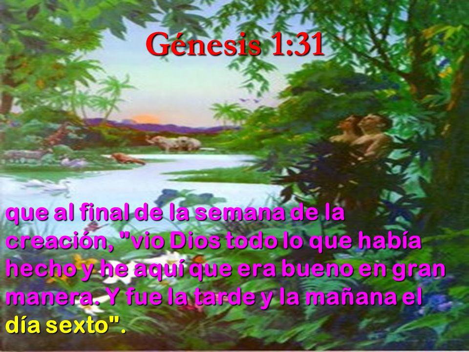 Génesis 1:31