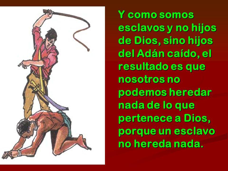 Y como somos esclavos y no hijos de Dios, sino hijos del Adán caído, el resultado es que nosotros no podemos heredar nada de lo que pertenece a Dios, porque un esclavo no hereda nada.