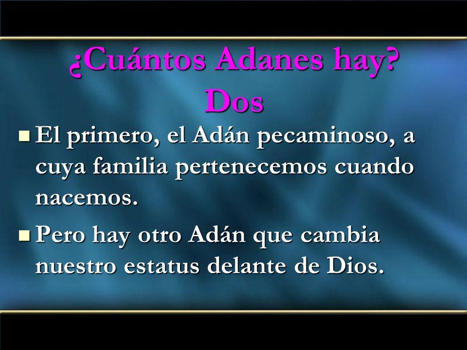 ¿Cuántos Adanes hay Dos