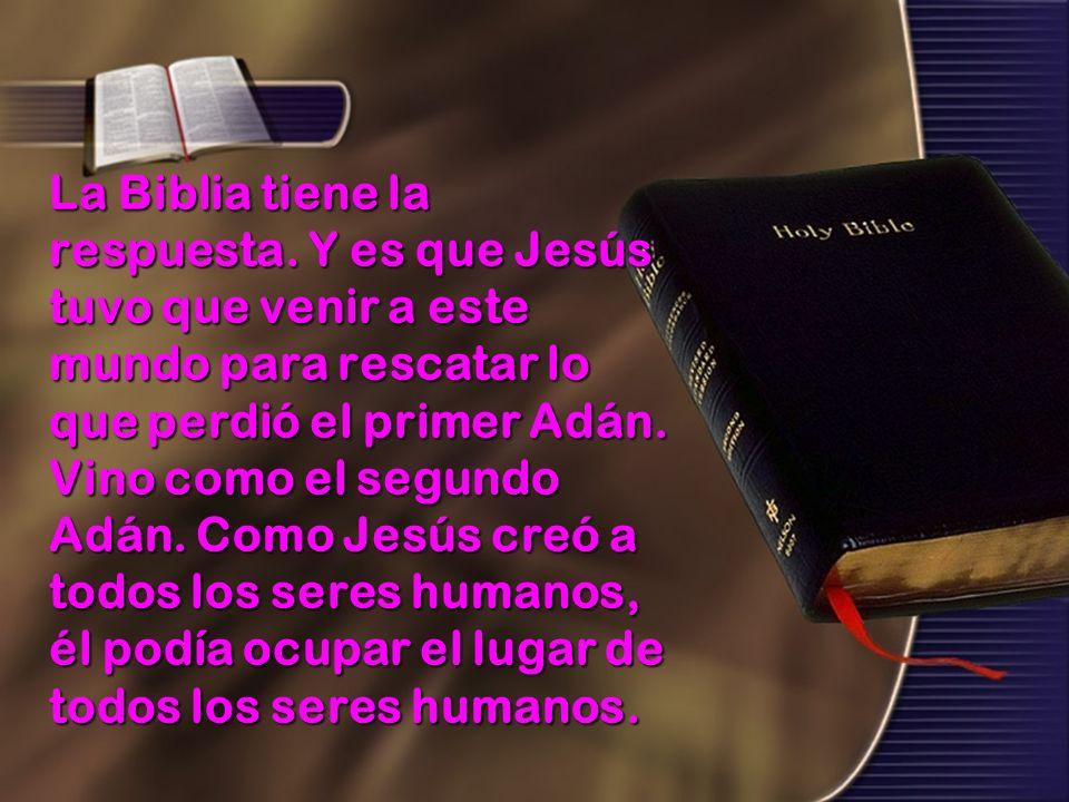 La Biblia tiene la respuesta