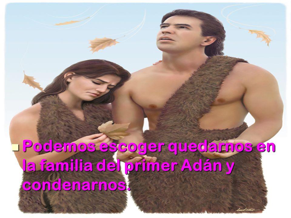 Podemos escoger quedarnos en la familia del primer Adán y condenarnos.