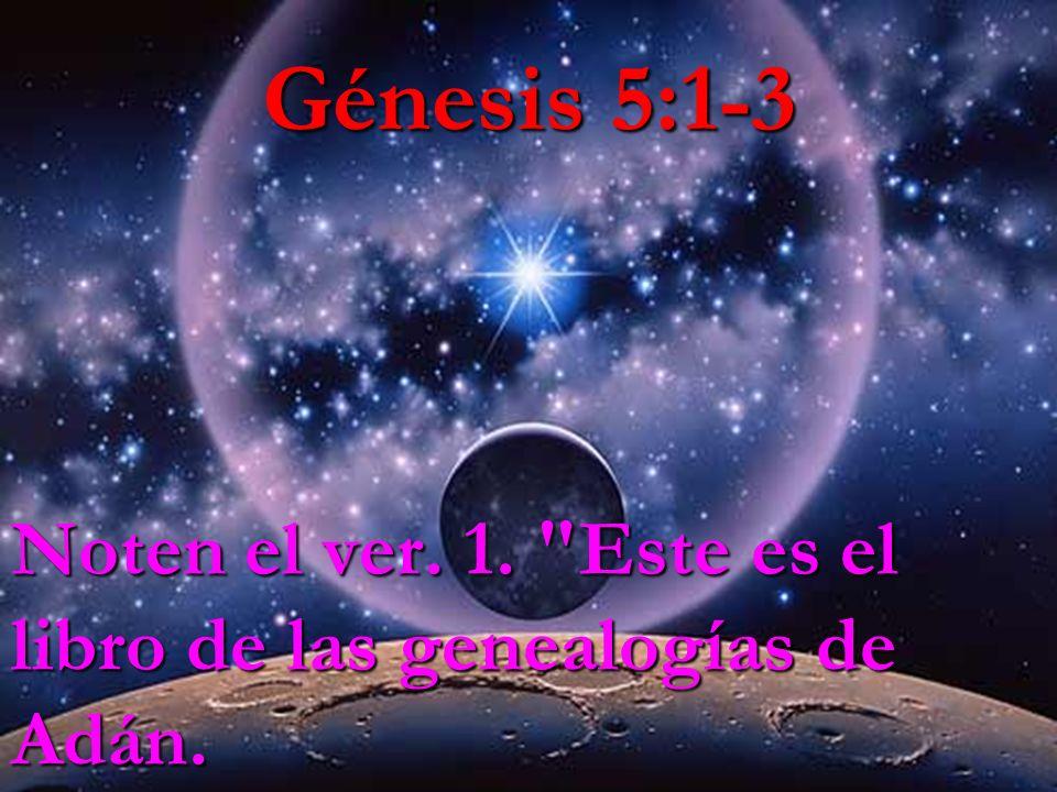 Génesis 5:1-3 Noten el ver. 1. Este es el libro de las genealogías de Adán.