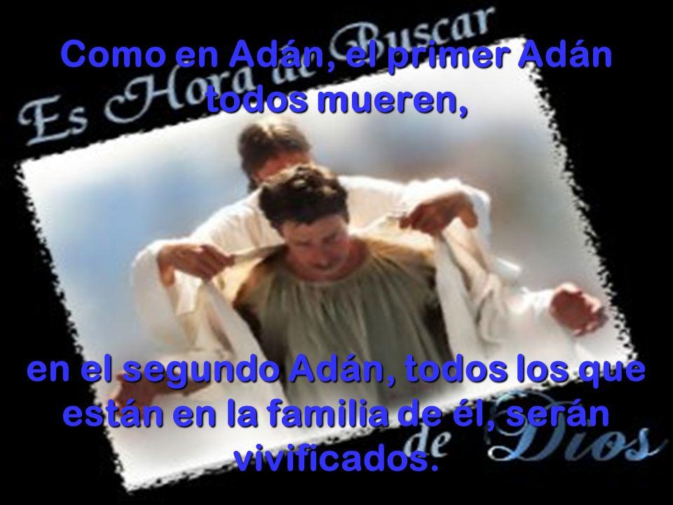 Como en Adán, el primer Adán todos mueren, en el segundo Adán, todos los que están en la familia de él, serán vivificados.
