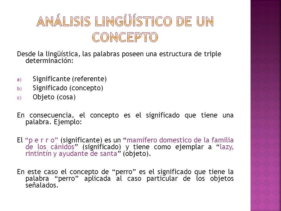 Análisis lingüístico de un concepto