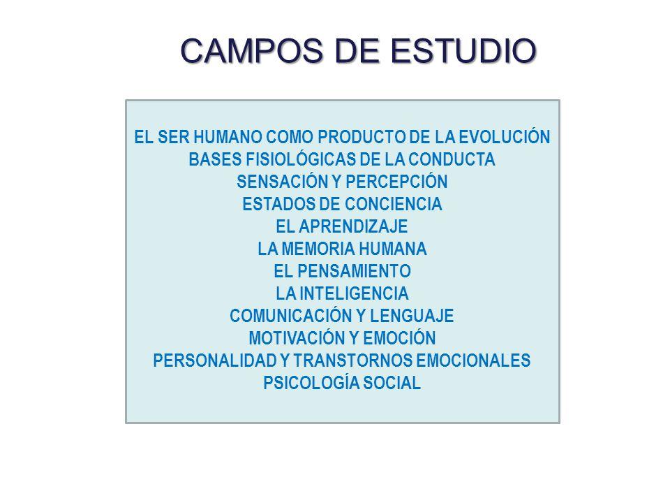 CAMPOS DE ESTUDIO EL SER HUMANO COMO PRODUCTO DE LA EVOLUCIÓN