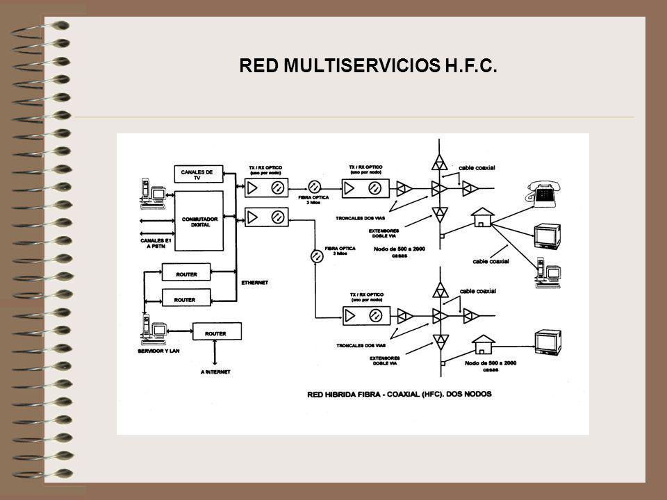 RED MULTISERVICIOS H.F.C.