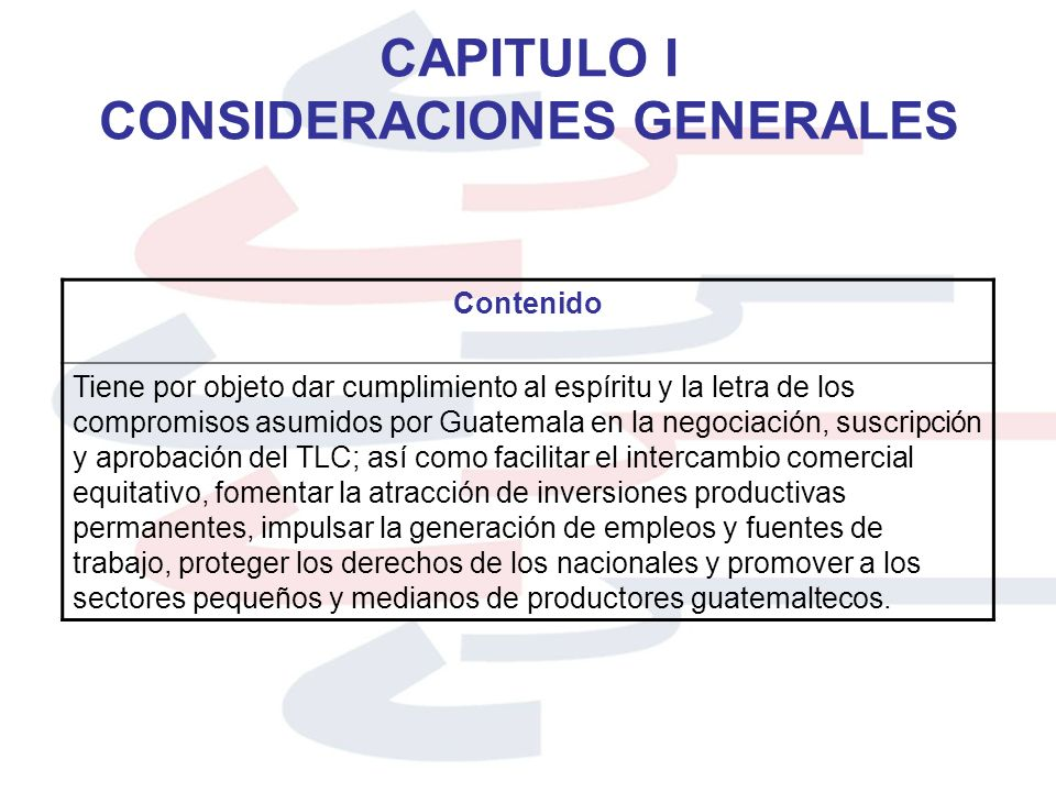 CAPITULO I CONSIDERACIONES GENERALES