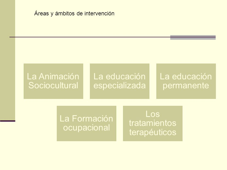 Áreas y ámbitos de intervención