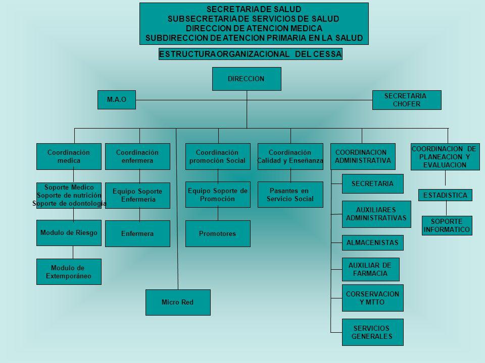 SUBSECRETARIA DE SERVICIOS DE SALUD DIRECCION DE ATENCION MEDICA