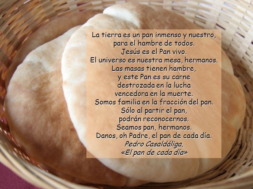 La tierra es un pan inmenso y nuestro, para el hambre de todos.