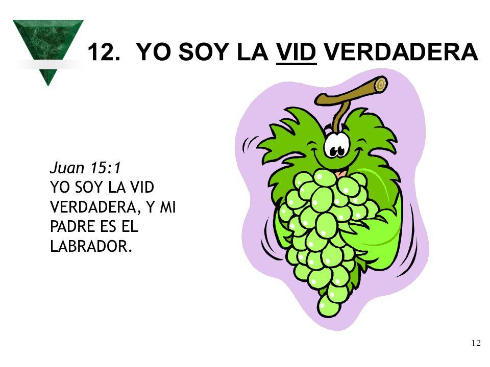 12. YO SOY LA VID VERDADERA Juan 15:1 YO SOY LA VID VERDADERA, Y MI PADRE ES EL LABRADOR.
