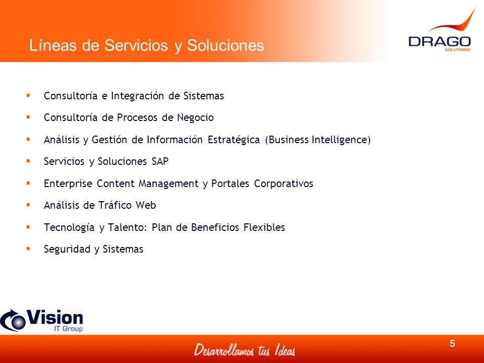 Líneas de Servicios y Soluciones