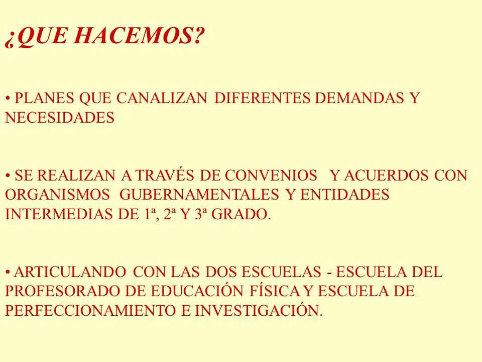 ¿QUE HACEMOS PLANES QUE CANALIZAN DIFERENTES DEMANDAS Y NECESIDADES