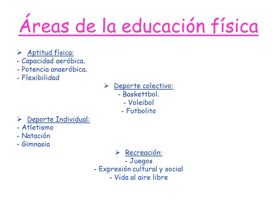 Áreas de la educación física