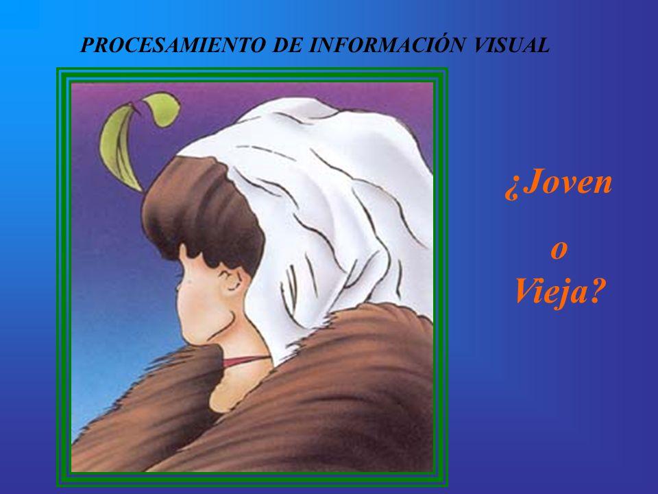 PROCESAMIENTO DE INFORMACIÓN VISUAL
