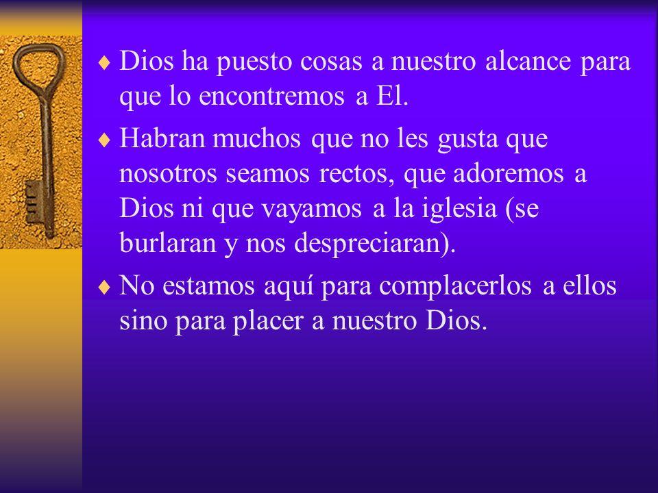 Dios ha puesto cosas a nuestro alcance para que lo encontremos a El.