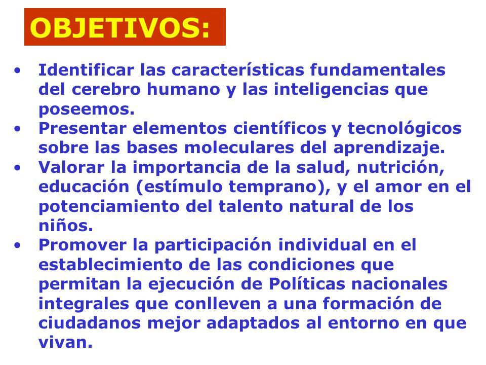 OBJETIVOS: Identificar las características fundamentales del cerebro humano y las inteligencias que poseemos.