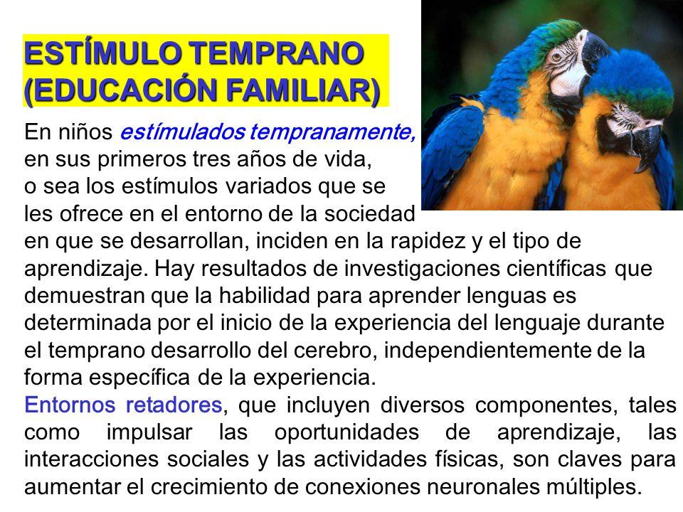 ESTÍMULO TEMPRANO (EDUCACIÓN FAMILIAR)