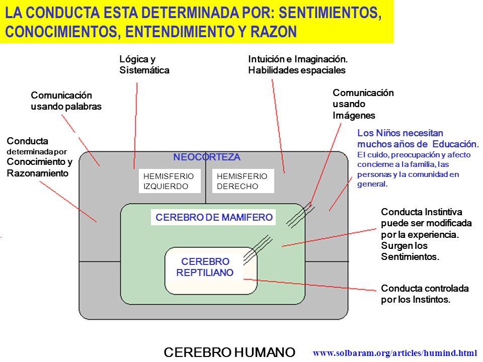 LA CONDUCTA ESTA DETERMINADA POR: SENTIMIENTOS,