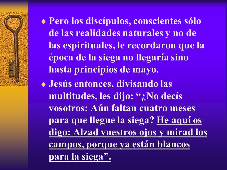 Pero los discípulos, conscientes sólo de las realidades naturales y no de las espirituales, le recordaron que la época de la siega no llegaría sino hasta principios de mayo.