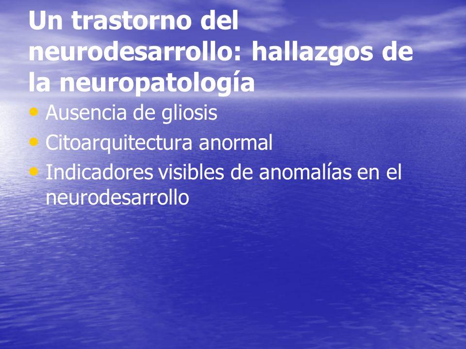 Un trastorno del neurodesarrollo: hallazgos de la neuropatología