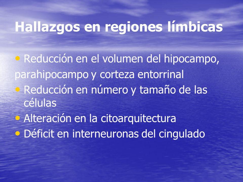 Hallazgos en regiones límbicas