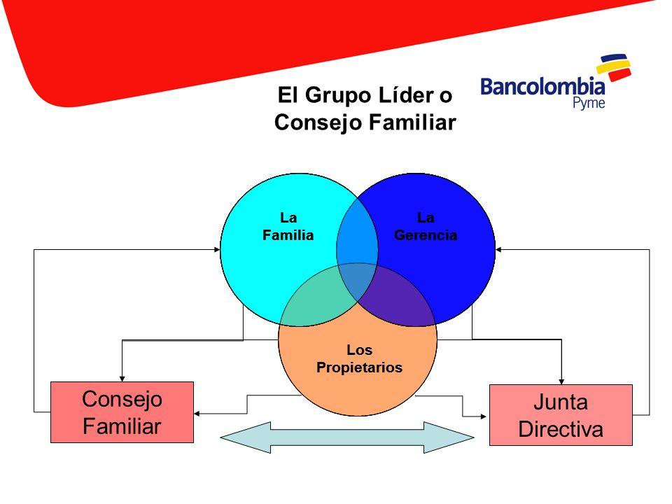 El Grupo Líder o Consejo Familiar