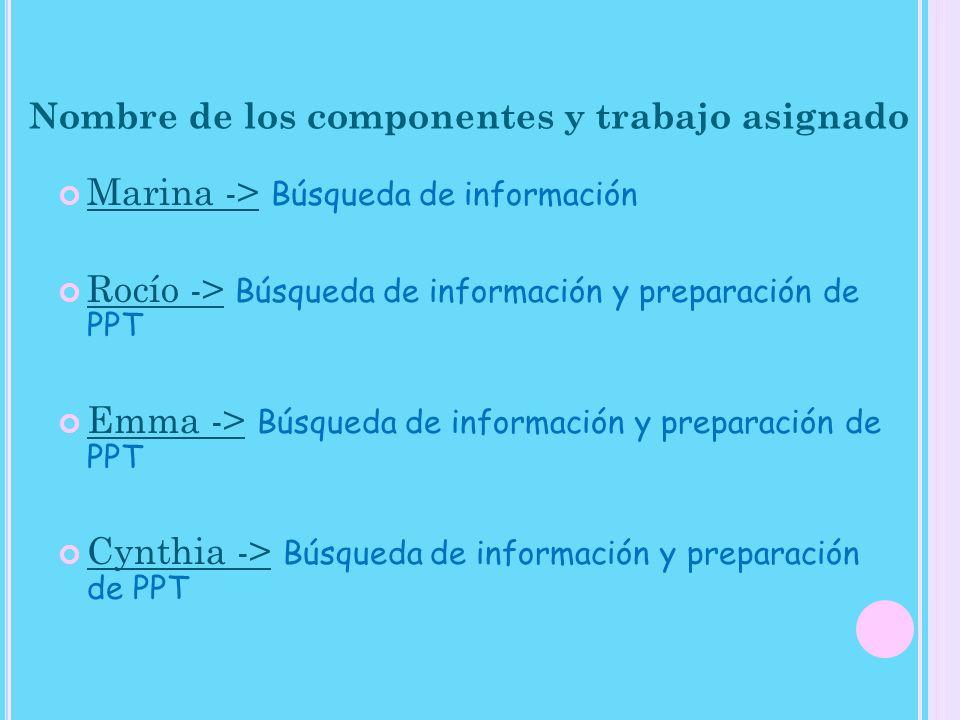 Nombre de los componentes y trabajo asignado