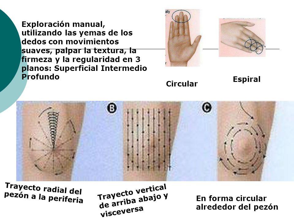 Exploración manual, utilizando las yemas de los dedos con movimientos suaves, palpar la textura, la firmeza y la regularidad en 3 planos: Superficial Intermedio Profundo