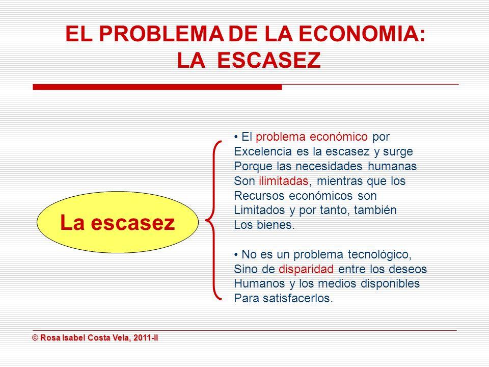 EL PROBLEMA DE LA ECONOMIA: