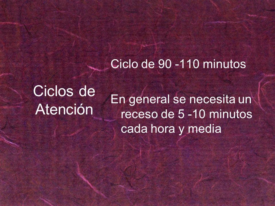 Ciclos de Atención Ciclo de 90 -110 minutos