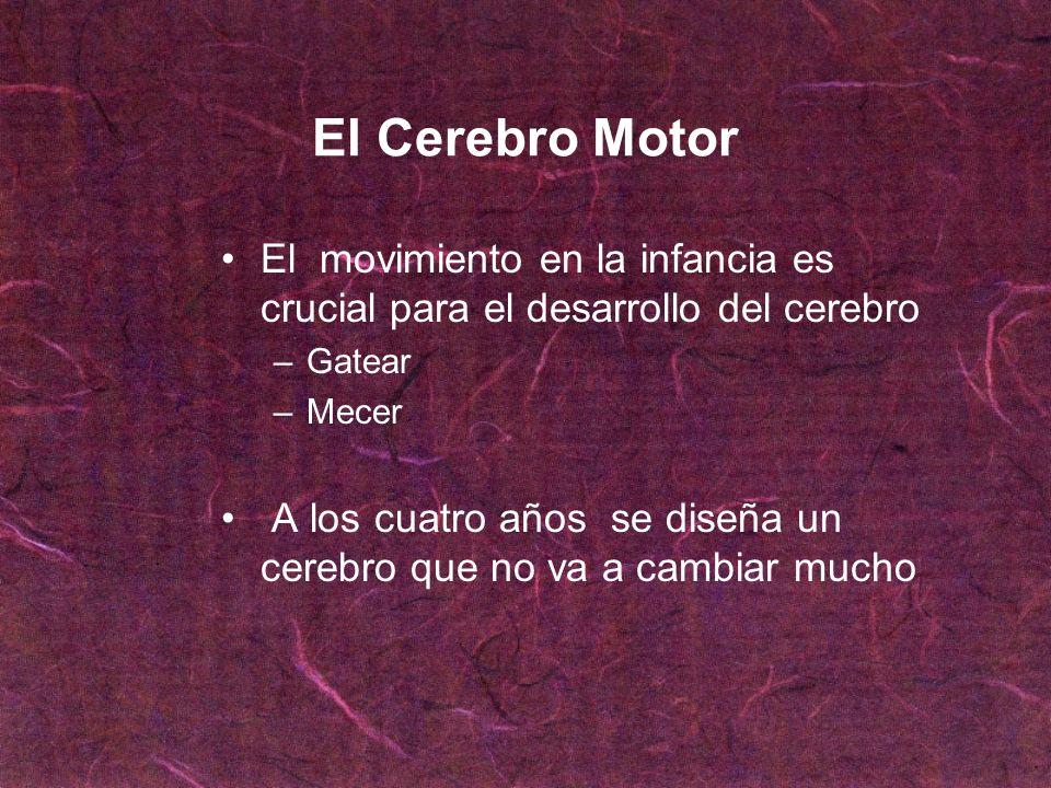 El Cerebro MotorEl movimiento en la infancia es crucial para el desarrollo del cerebro. Gatear. Mecer.