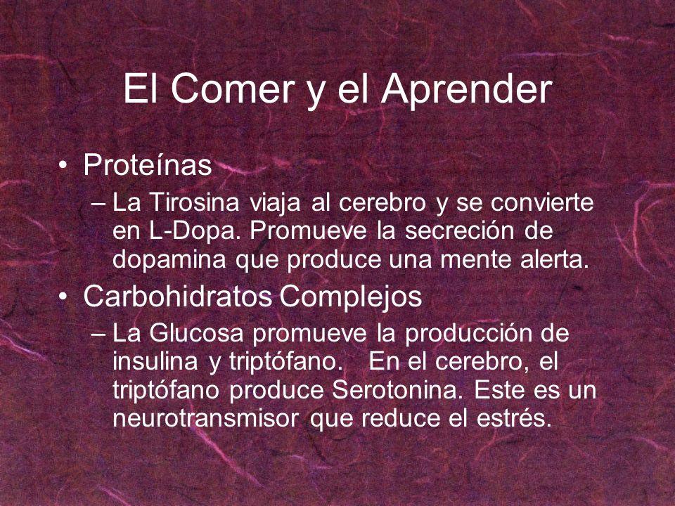 El Comer y el Aprender Proteínas Carbohidratos Complejos