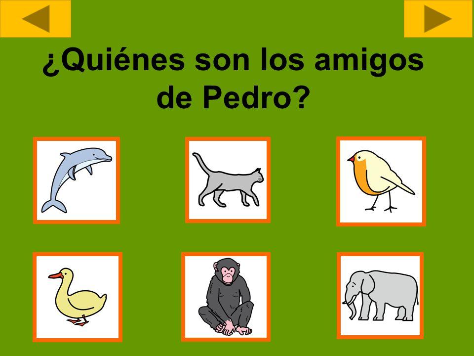 ¿Quiénes son los amigos de Pedro