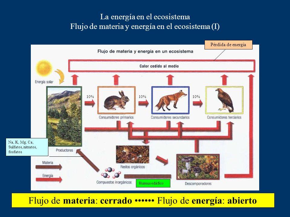 Flujo de materia: cerrado •••••• Flujo de energía: abierto