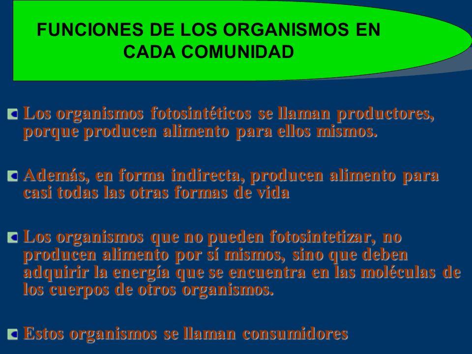 FUNCIONES DE LOS ORGANISMOS EN CADA COMUNIDAD